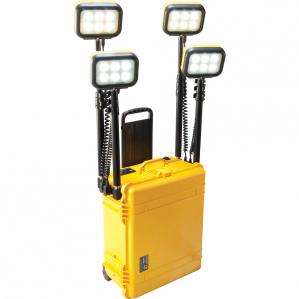 9470C LED Remote Area Lighting System