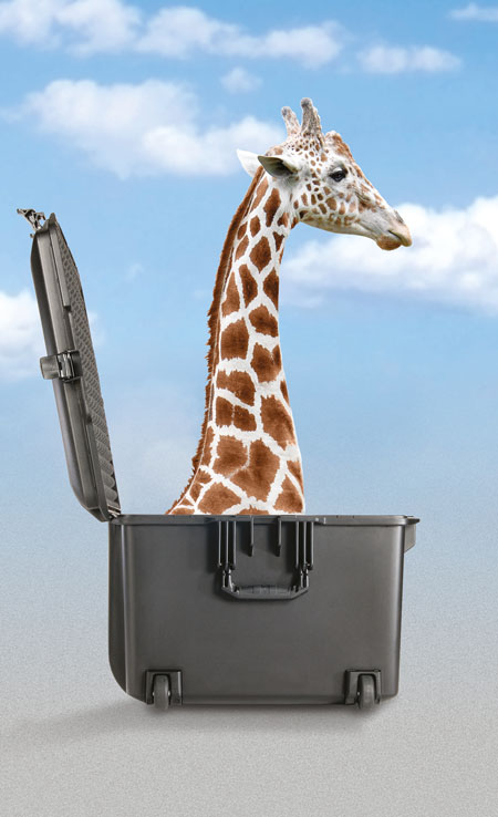 peli-1557-1607-1637-air-case-with-giraffe-450x738px.jpg