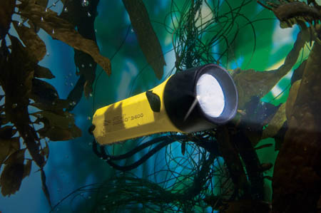 peli-2400n-nemo-dive-light.jpg